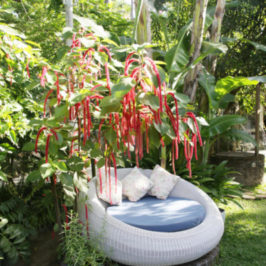garden lounge furniture